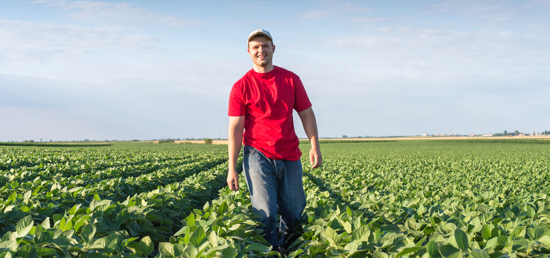 Young farmer standing in a soybean field